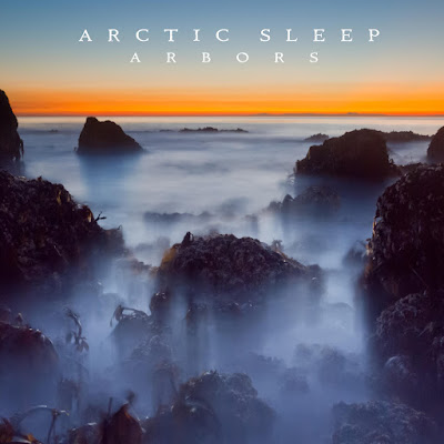 Arctic Sleep