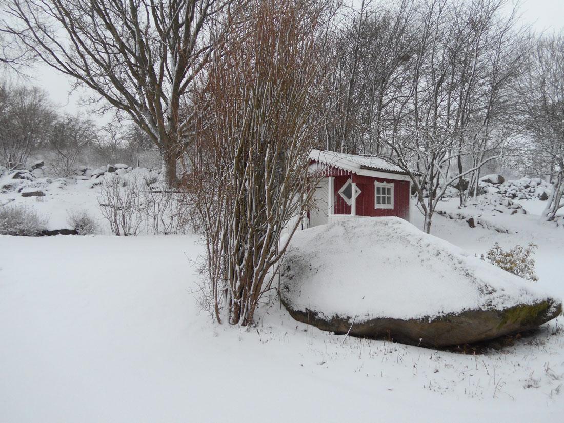 Nevicata del 11 gennaio 2017
