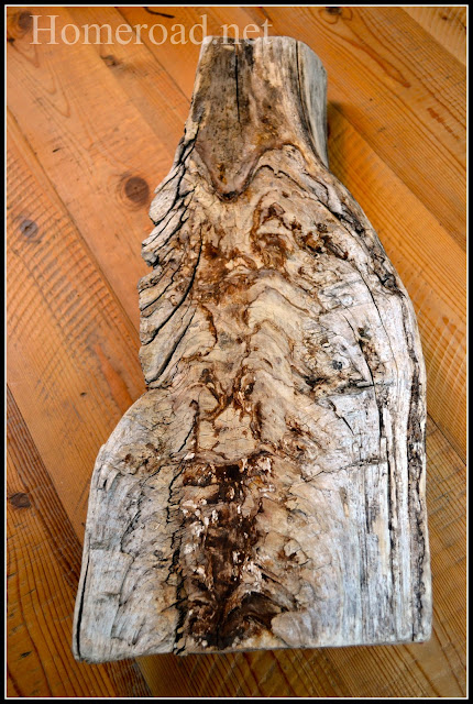 Large wooden driftwood piece