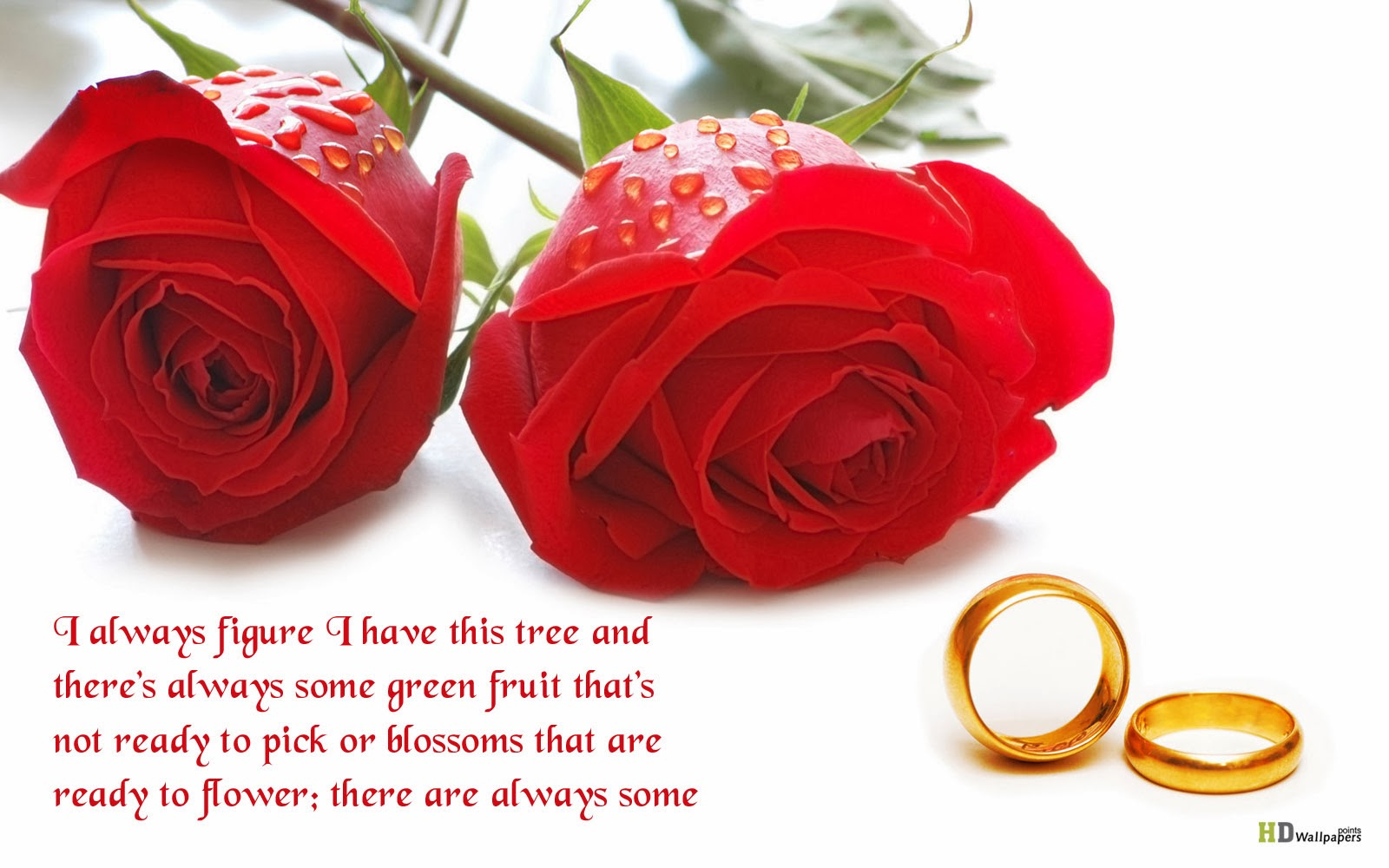 Husband Wife Islamic Quotes Wallpaper Flowers Quotes Wallpapers Beautiful Flowers Wallpapers