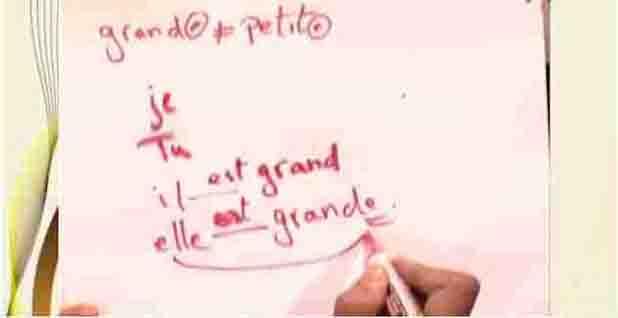 شرح بالفيديو لغة فرنسية ثانوية عامة مراجعة على ما سبق دراسته في اولي وتانية ثانوي 2019