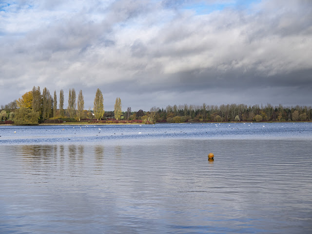 Willen Lake Walk