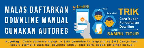 Cara Setting Fitur Autoreg Downline Niki Reload Server Pulsa Elektrik Online Termurah Jakarta Bandung Semarang Surabaya