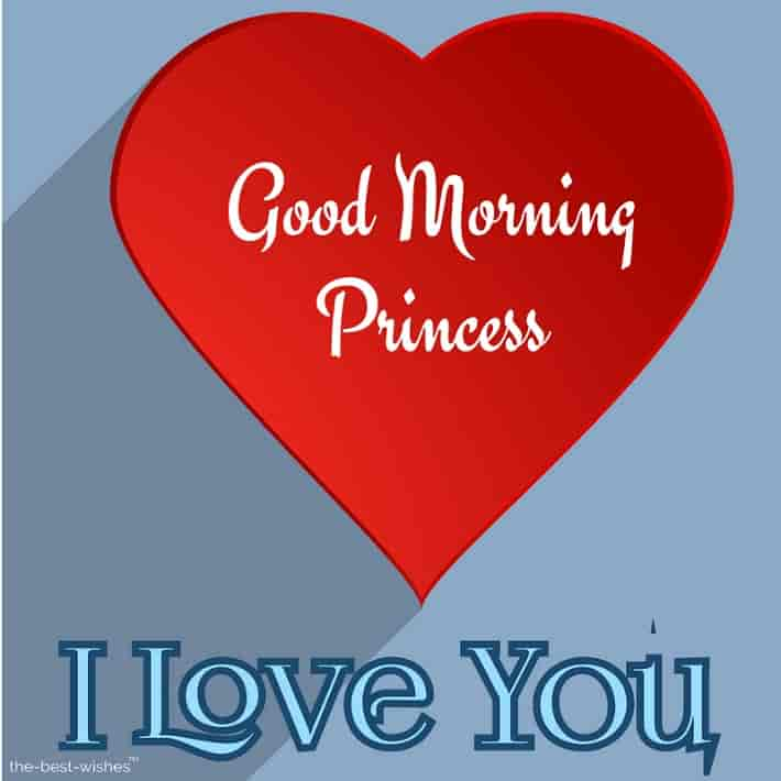 gud mrng i love you princess