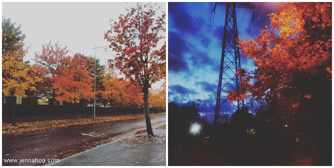 Finnish autumn is beautiful