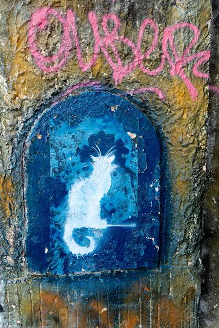 Grafite com o desenho de um gatinho branco