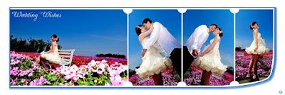 Royal Blue Wedding Template