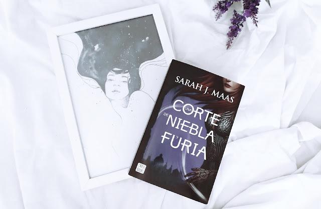 RESEÑA » UNA CORTE DE NIEBLA Y FURIA.