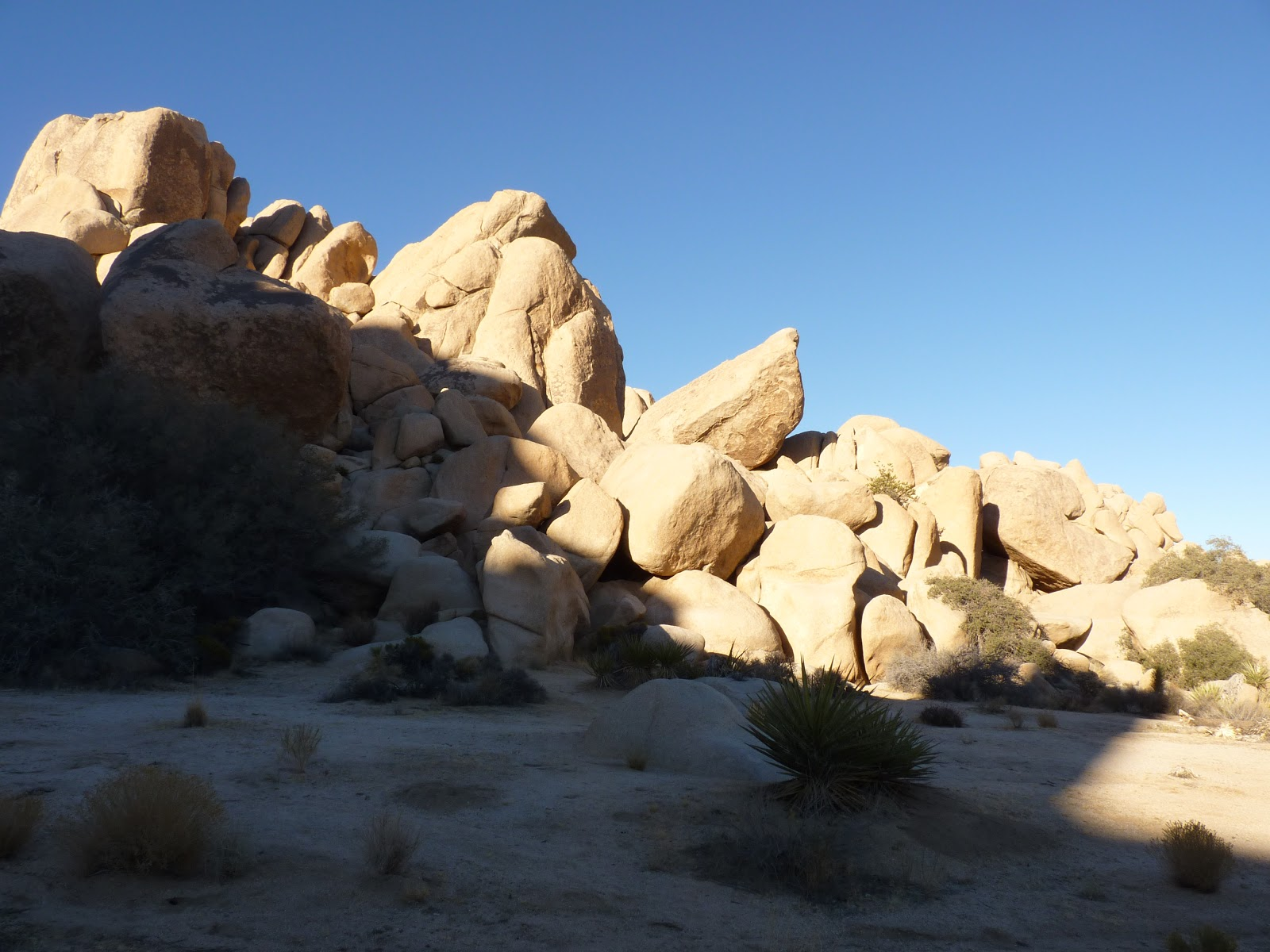 Joshua Tree National Park, Californie
