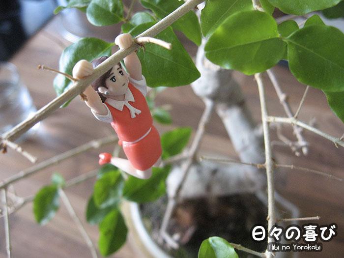 Figurine Fuchiko sur la branche d'un bonsai