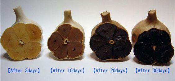 Memproduksi Black Garlic Untuk Obat Kanker