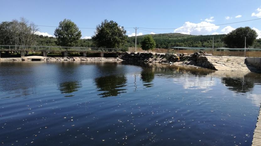Zona Fluvial da Lameira