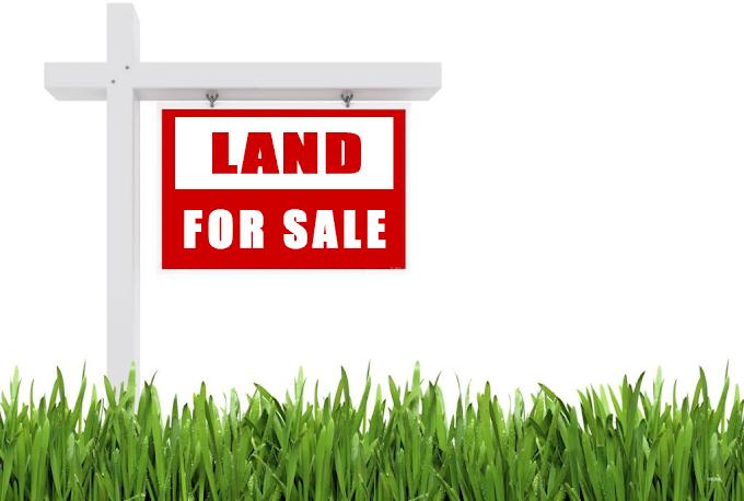 Tips Memilih Broker Jual Beli Tanah Terbaik