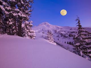Luna del lobo la podrás ver este 10 de febrero