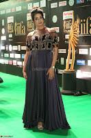 Sanjjanaa Galrani aka Archana Galrani in Maroon Gown beautiful Pics at IIFA Utsavam Awards 2017 44.JPG
