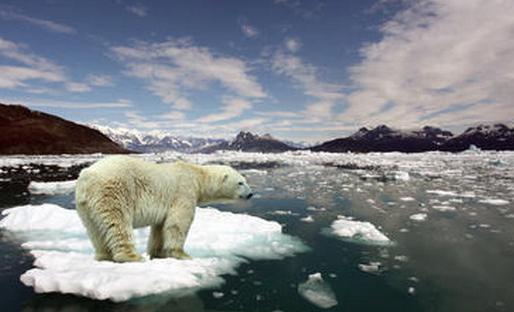 Pemanasan Global Dampak Rumah Kaca
