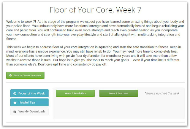 Floor of Your Core Online Program Weekly Class sample Screenshot