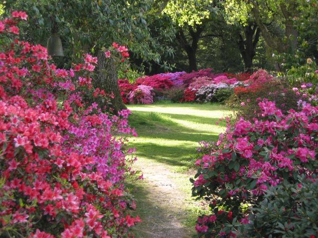 Exbury Gardens, Romantisme Taman Berbunga