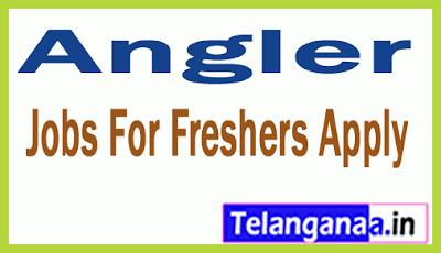 Angler Recruitment Jobs For Freshers Apply