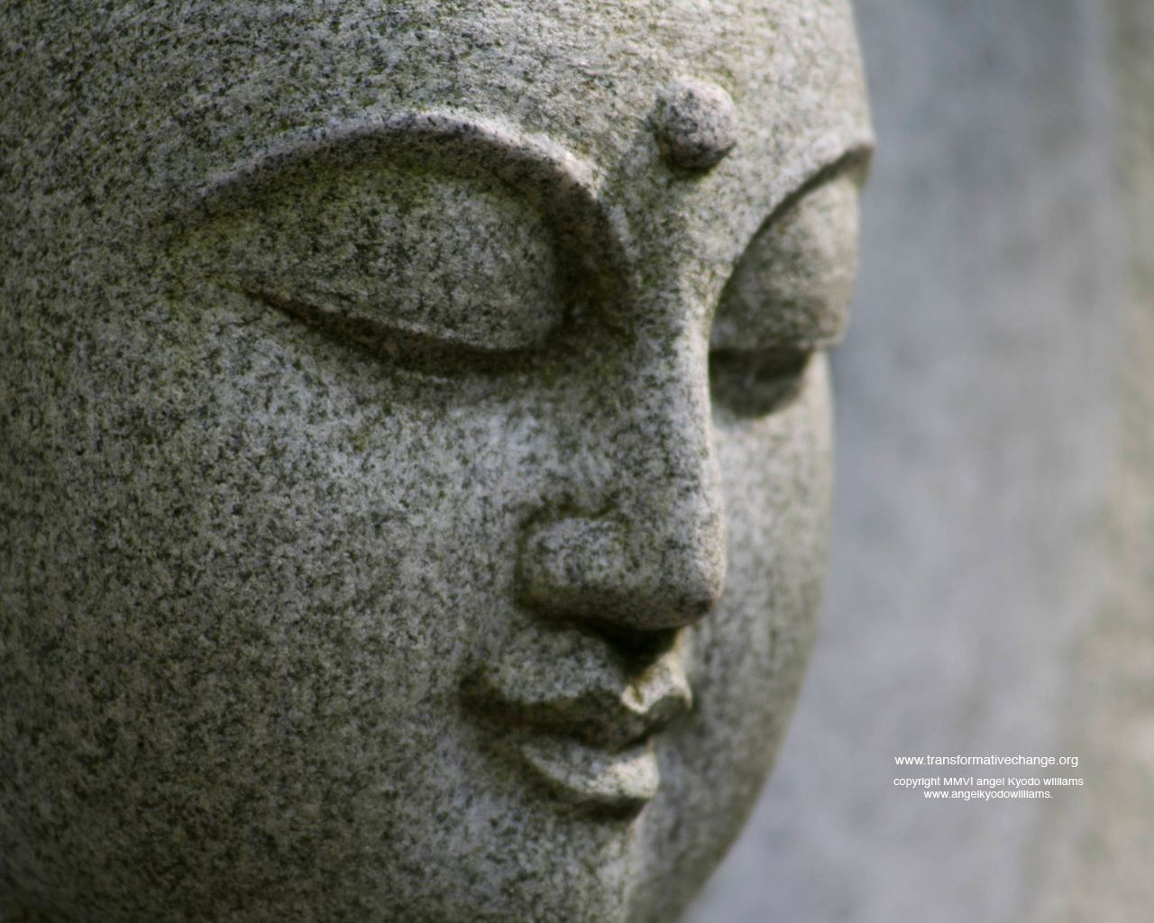 Desktop Wallpaper With Tamil Quotes Buddha 25 Beautiful Wallpapers