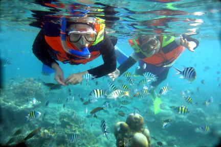 Snorkeling Pantai Pangandaran