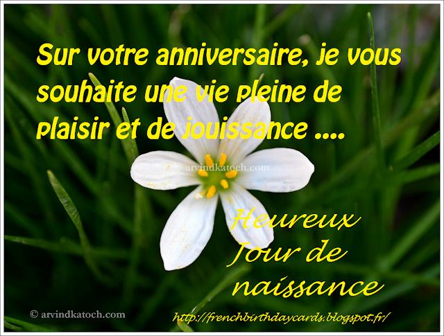 anniversaire, jouissance, French Birthday card,