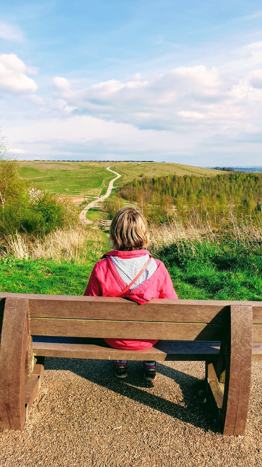 A Walk Around Gedling Country Park: Link Up