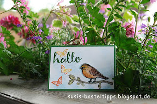Gucklochkarte mit Big Shot, Stampin Up Stempelset Vogelhochzeit, schmetterlingen