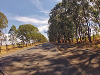 Bela paisagem com árvores dos lados.