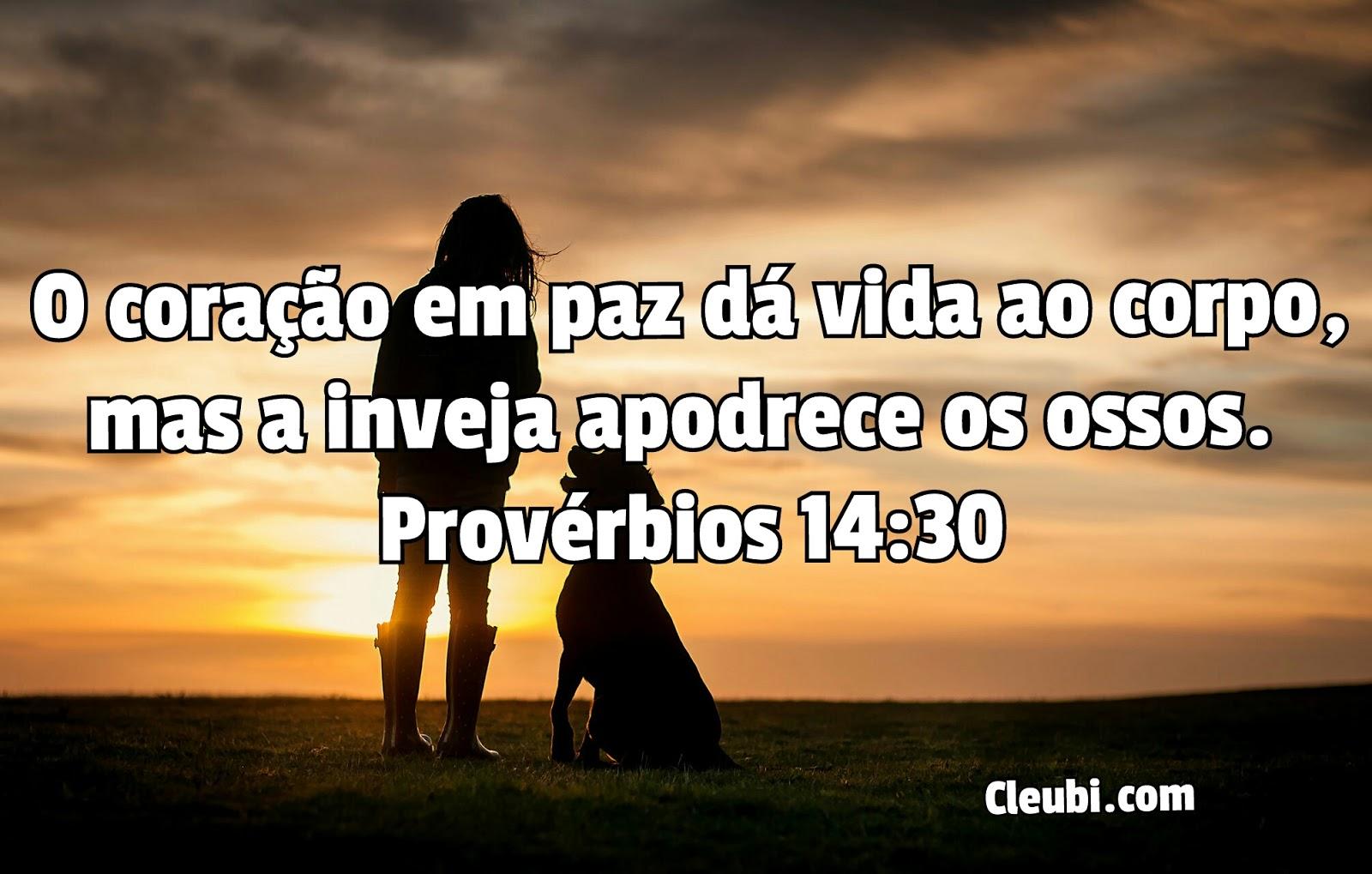 Famosos Versículo Bíblico : Provérbios 14:30 | VERSÍCULO BÍBLICO GK96