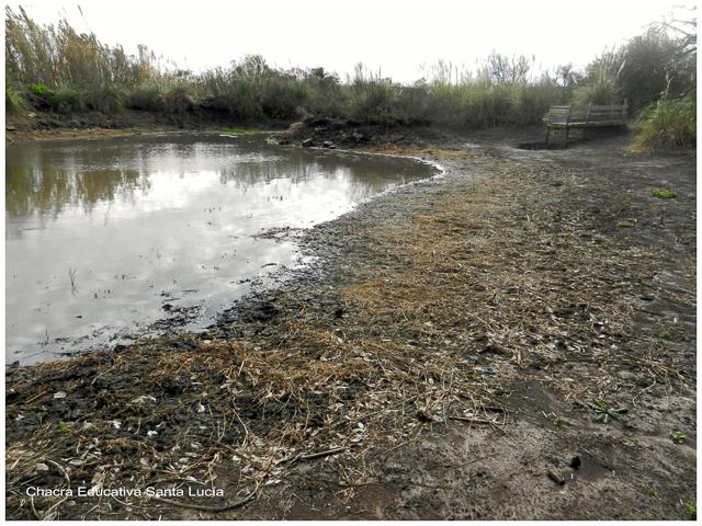 Durante la sequía del 2015 bajó el nivel de agua de los tajamares - Chacra Educativa Santa Lucía