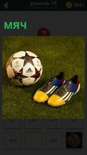 На траве лежит мяч и кроссовки для спортсменов, приготовленные для игры в футбол