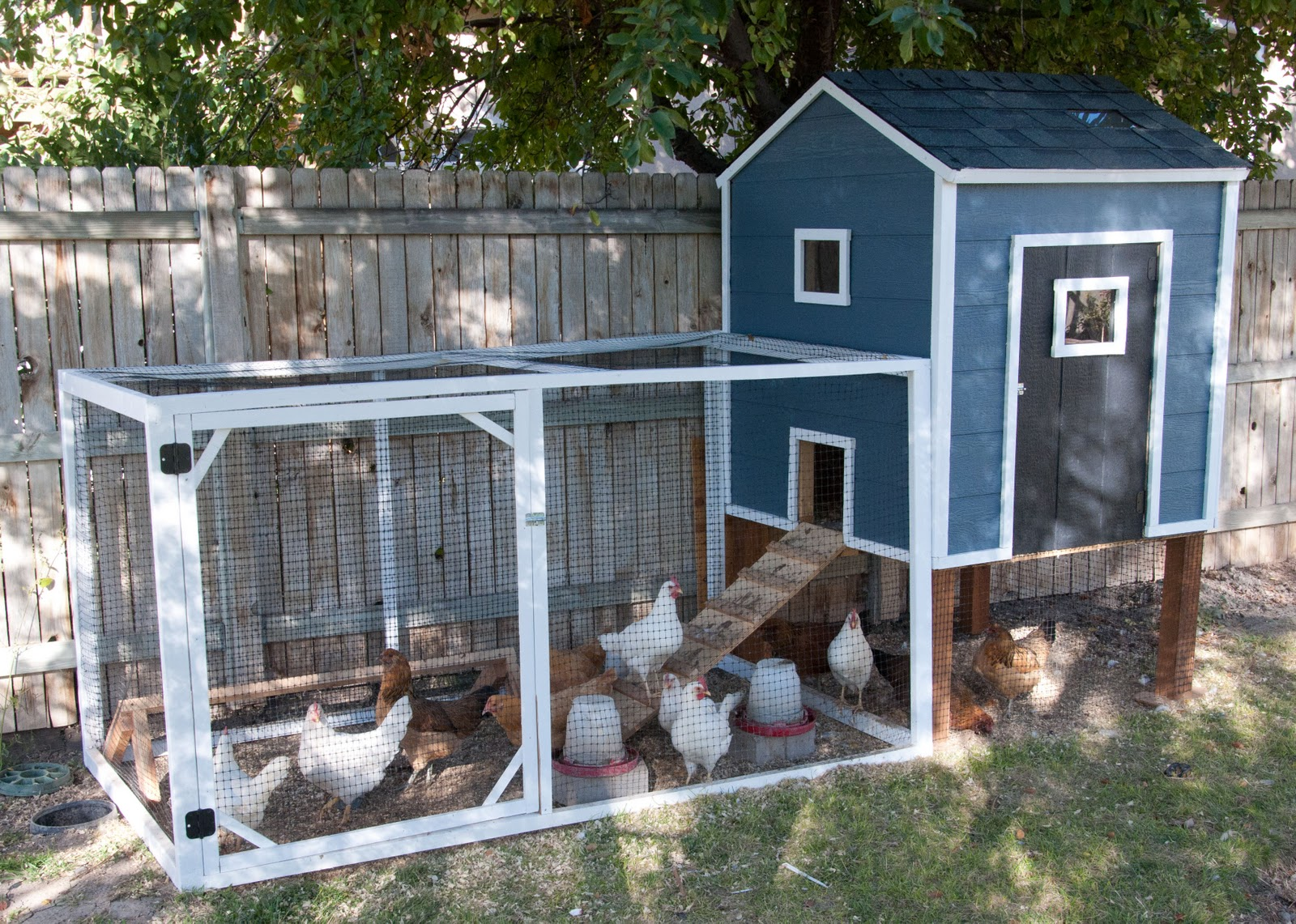 Diy Walk In Chicken Coop Our Chicken Coop A Story Of Chickens Housewives Of