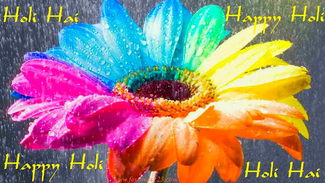 festivals123.com_holi_hd_greeting_card_5