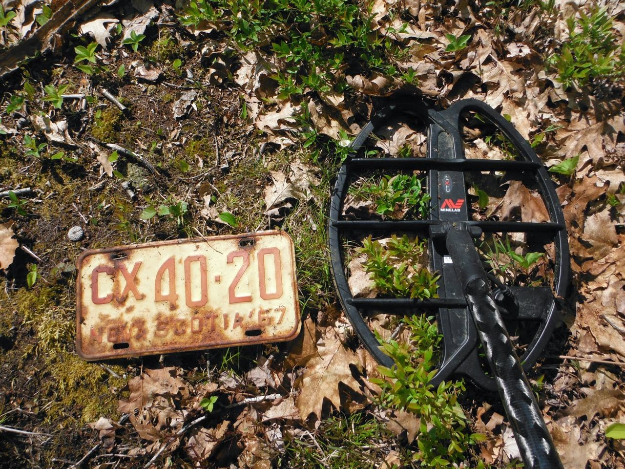 What Metal Detector Is Used On Curse Of Oak Island