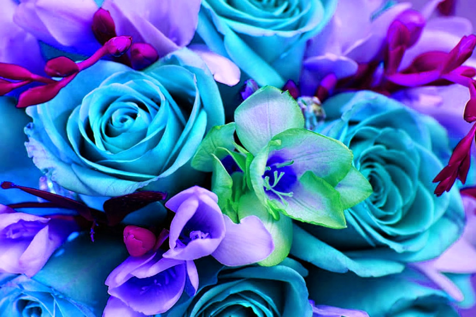 Doodlecraft: Colorful Bouquet Of Flowers Wallpaper Background