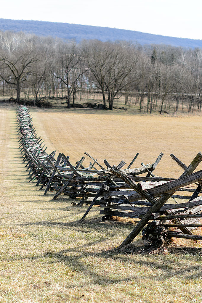 Split rail fence at School House Ridge South