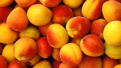 buah aprikot di Indonesia