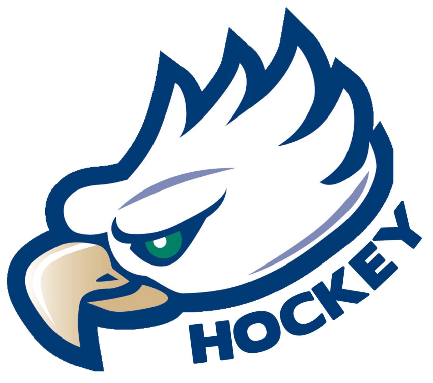 Cool Eagle Logos LogoCool Eagle Logo