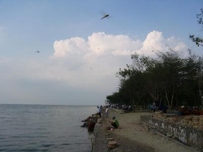 Tempat Wisata Pantai Maron Semarang 7