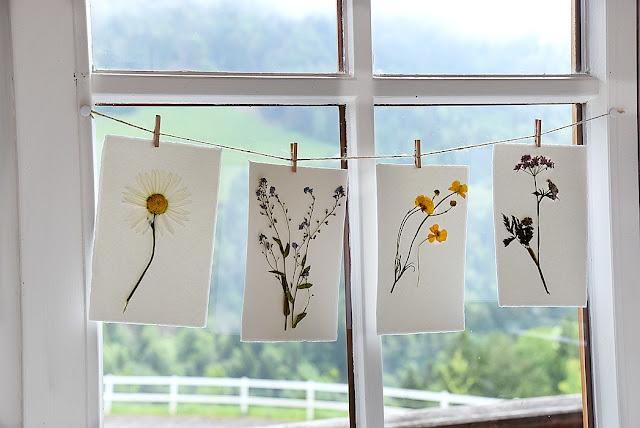 Fensterdeko mit gepressten Blumen