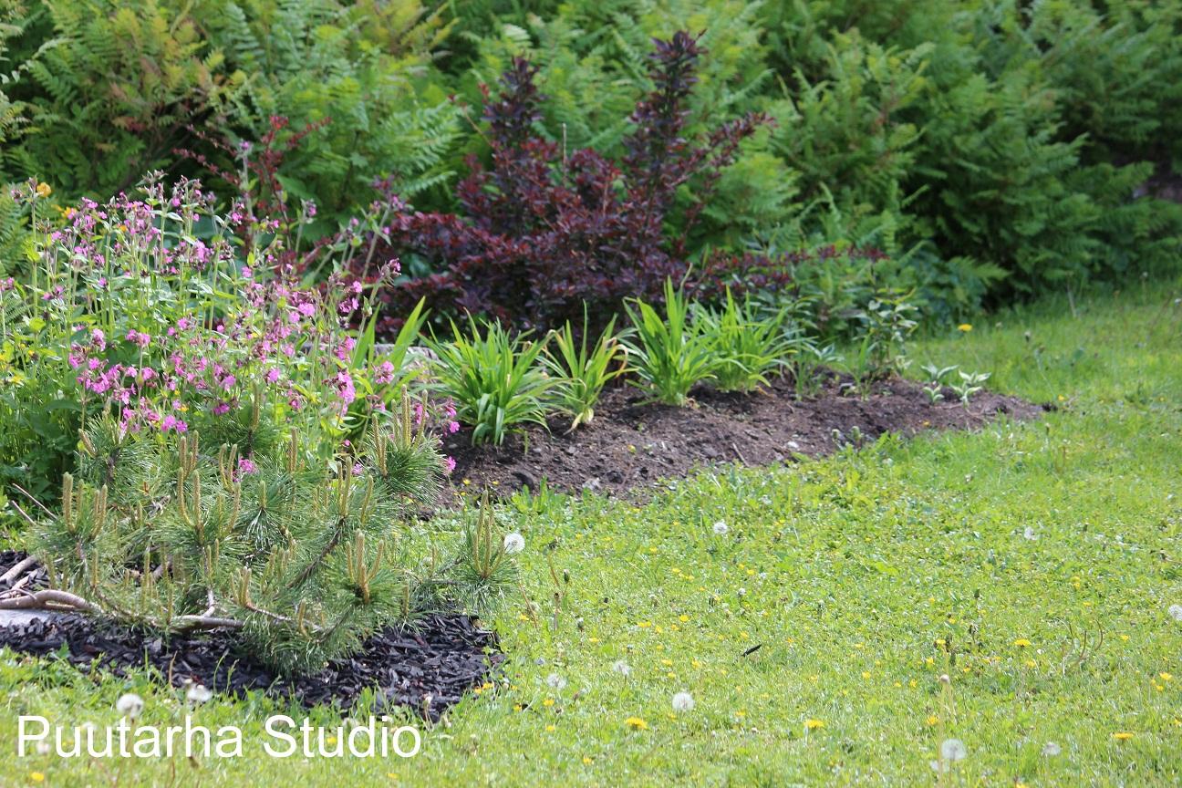 Sarin puutarhat: Muutosta ilmassa