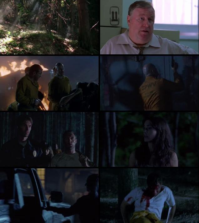 Wrong Turn 3 Left For Dead 2009 English 480p BRRip