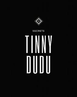 DOWNLOAD MP3: TINNY DUDU SECRET