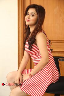 Actress Ragini Nandwani Pictures at Siddhardha Movie Interview  0101.JPG