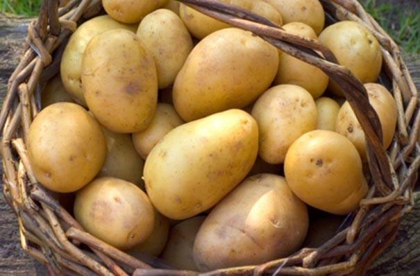 Cách làm trắng da bằng khoai tây đơn giản
