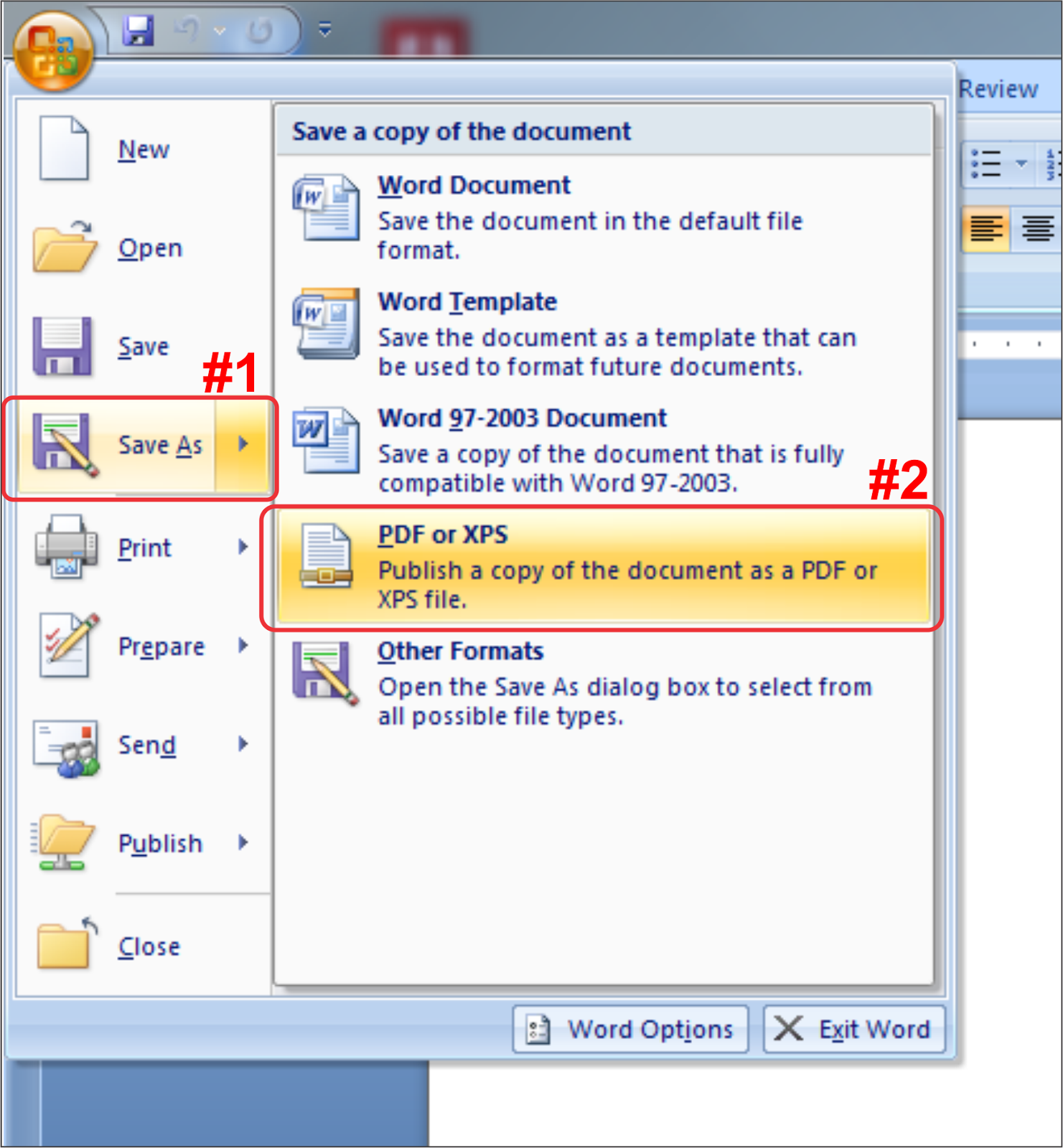 pdf to ms word converter
