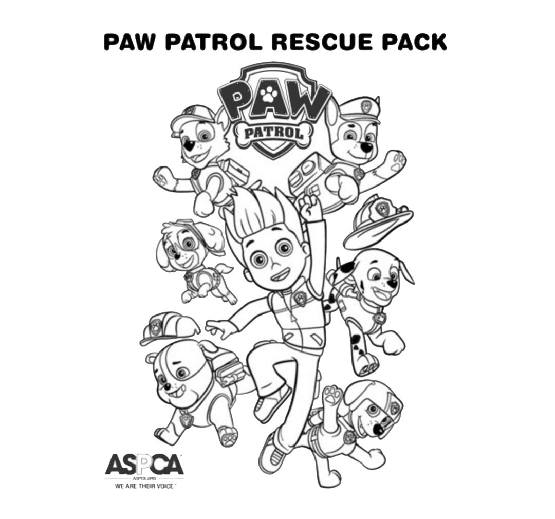 Zona Ilmu 2 Gambar Mewarnai Paw Patrol Untuk Anak Paud Dan Tk