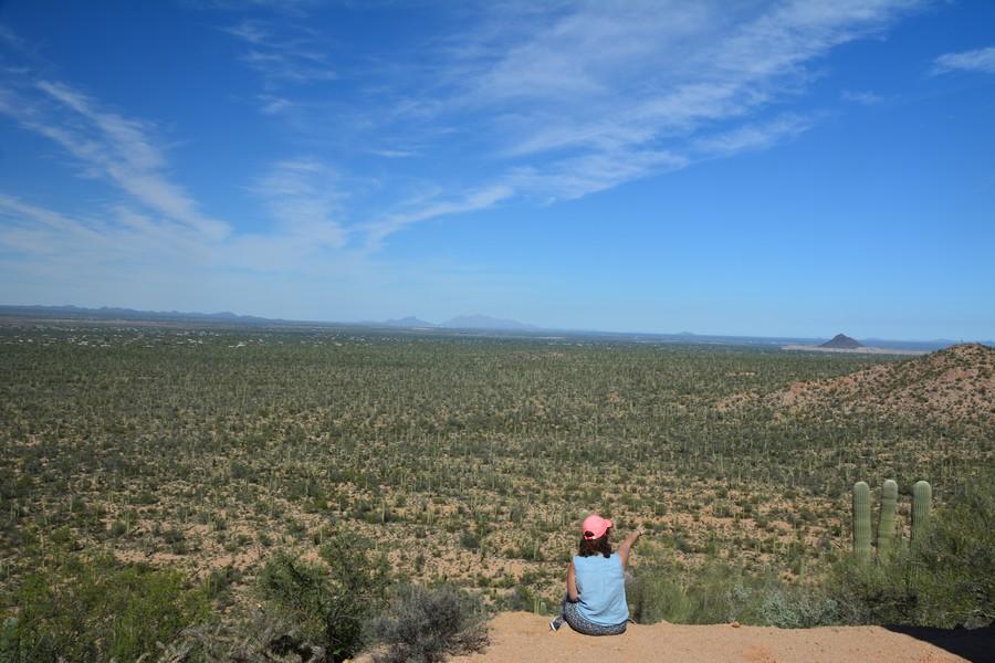 seule dans la vallée de cactus