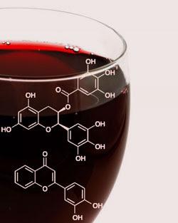 vino chimica